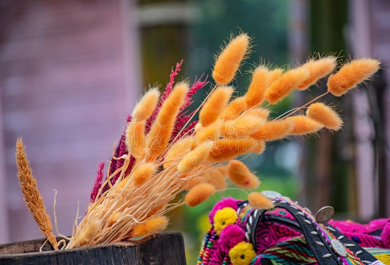 Flores secadas em uma cesta imagem de stock royalty free