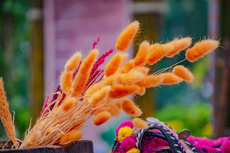 Flores secadas en cesta de madera fotografía de archivo libre de regalías