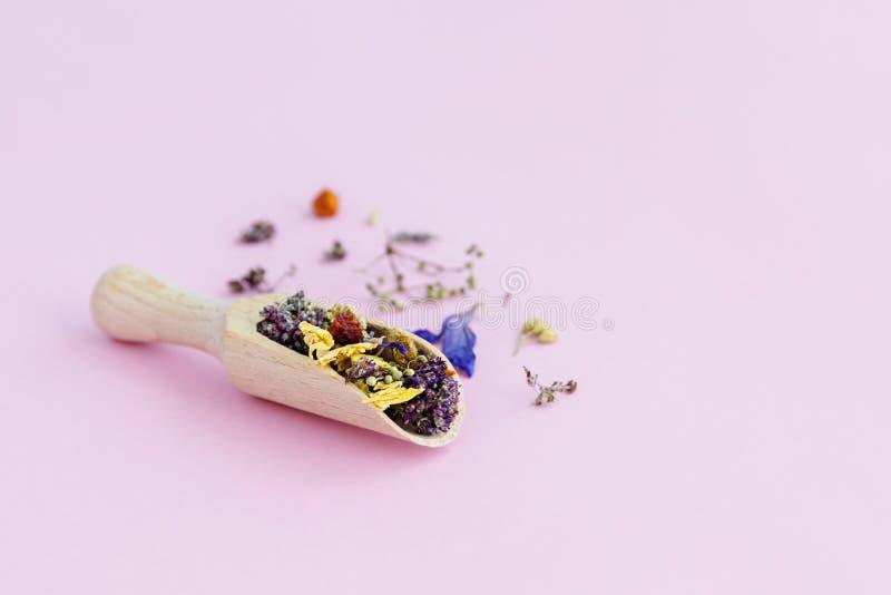 Flores secadas en cuchara de madera en fondo rosado imagen de archivo