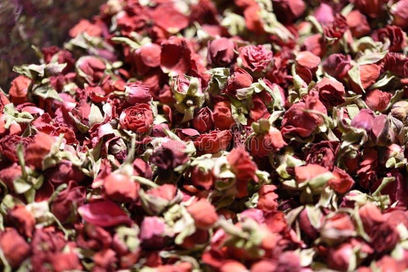 Flores secadas en la tienda imagen de archivo