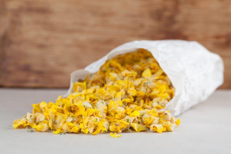 Flores secas del mullein imagen de archivo