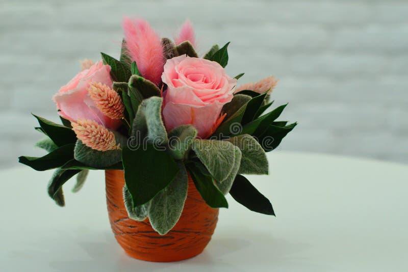 Flores secas para una decoración interior foto de archivo libre de regalías