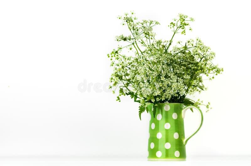 Flores selvagens no jarro imagens de stock royalty free