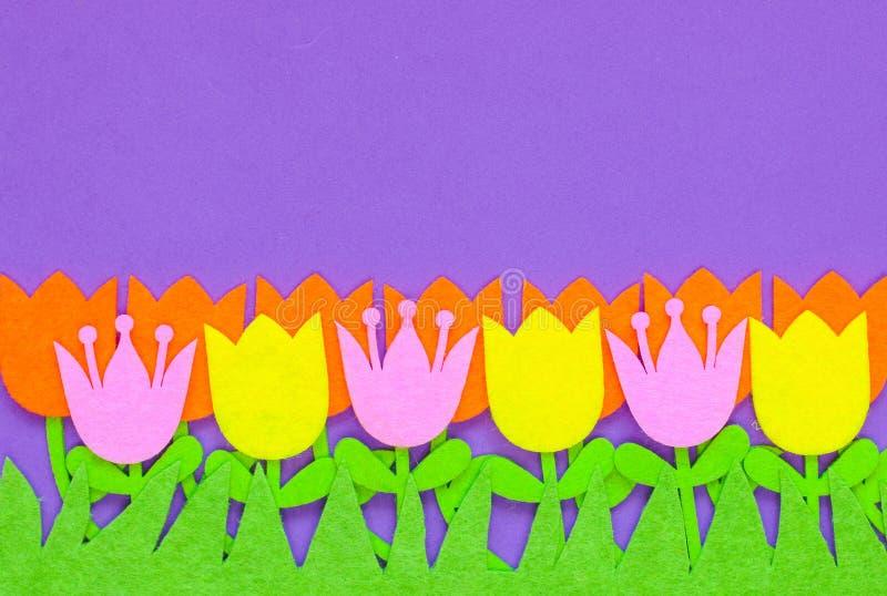 Flores sentidas brilhantemente coloridas da tulipa em um fundo liso ilustração stock