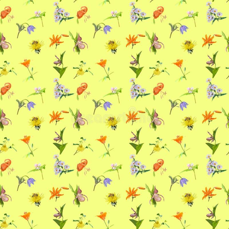 Flores silvestres Patrón transparente imagen de archivo