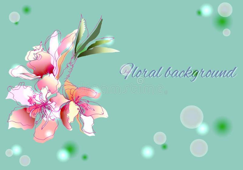 Flores tiradas mão da aquarela Flores do contorno da mola para decorar os feriados no papel, cartões, cumprimentos Ilustração do  ilustração stock