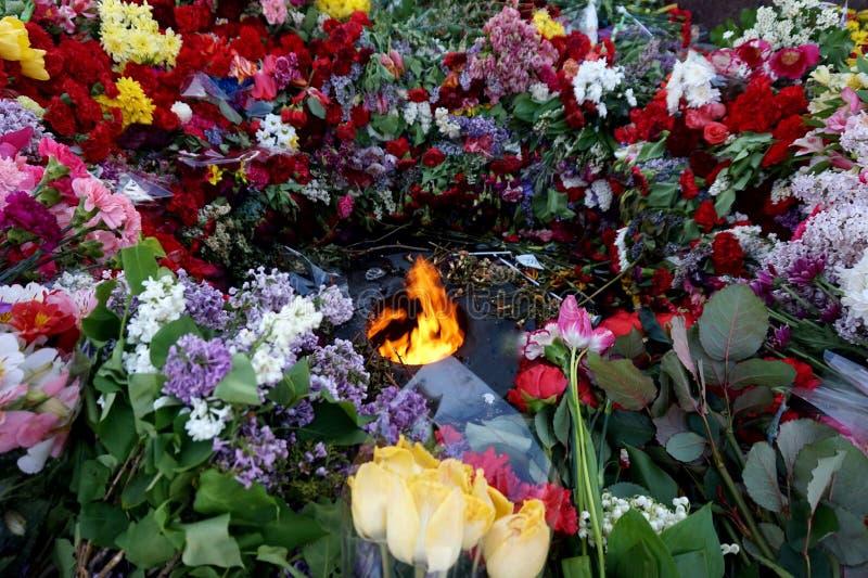 Flores traídas por la gente al ` eterno del fuego del ` ardiente en Victory Day sobre fascismo, el 9 de mayo imagen de archivo