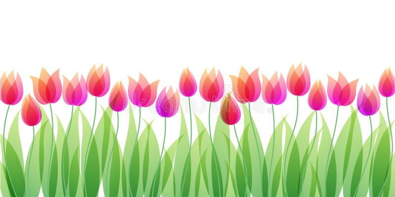 Flores transparentes stock de ilustración