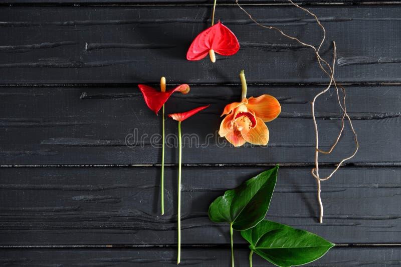 Flores tropicais e folhas verdes, orquídea, antúrio em um fundo de madeira preto, configuração lisa fotografia de stock
