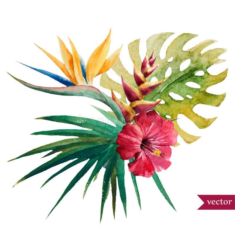 Flores tropicales agradables ilustración del vector