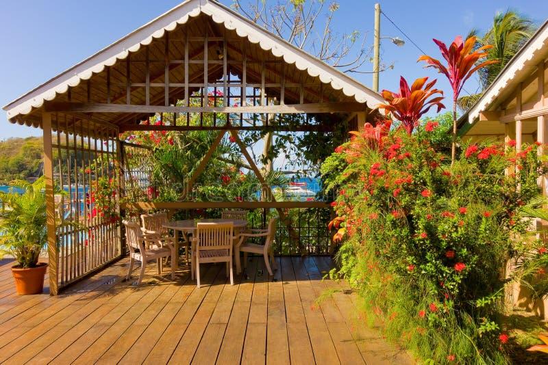 Flores tropicales coloridos por el mar fotos de archivo libres de regalías