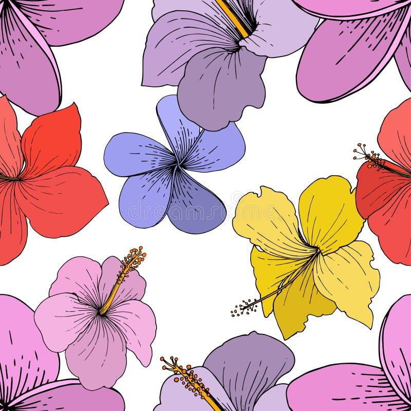 Flores tropicales florales del hibisco del vector Arte grabado de la tinta en el fondo blanco Modelo inconsútil del fondo stock de ilustración