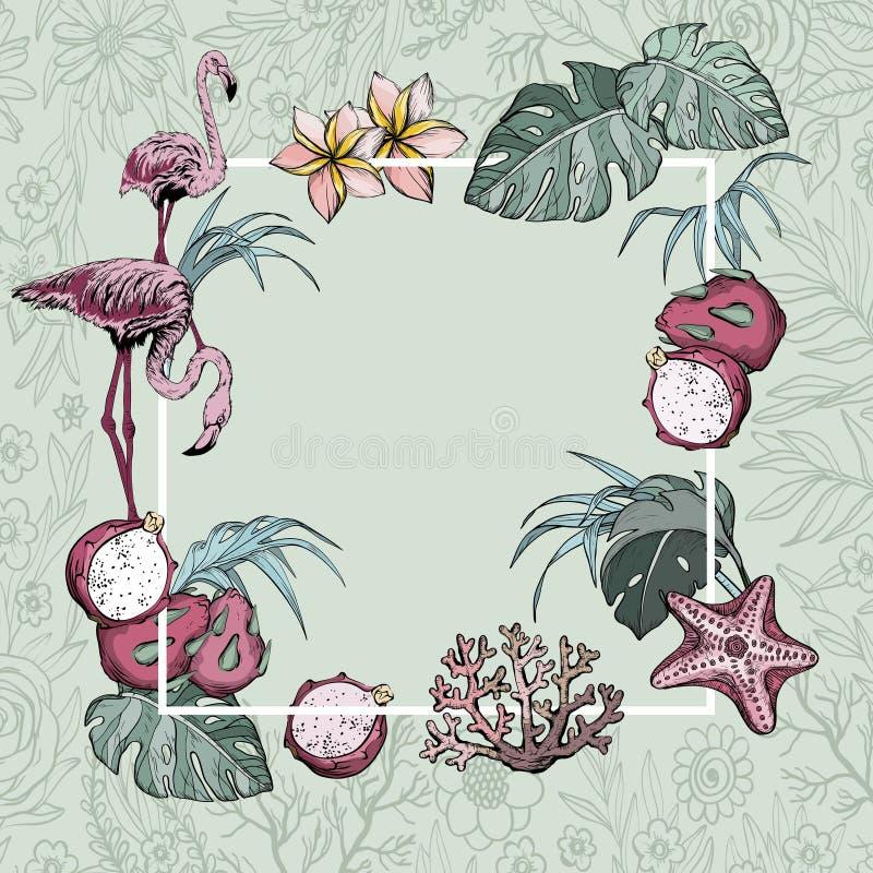 Flores tropicales, frutas exóticas y fondo de la bandera del verano de los pájaros del flamenco stock de ilustración