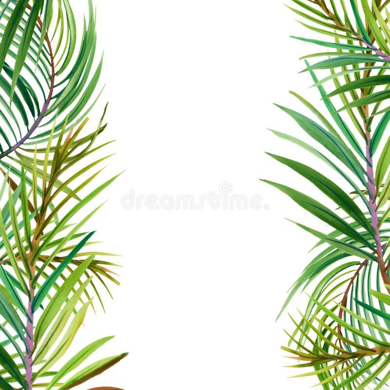 Flores tropicales, hojas Ilustración de la acuarela stock de ilustración