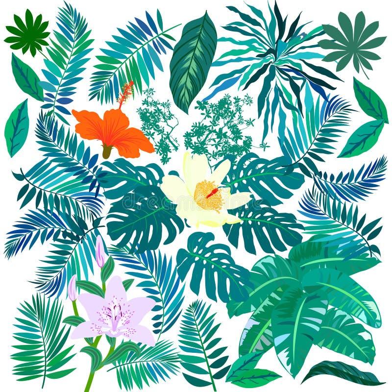Flores tropicales y plantas fijadas ilustración del vector