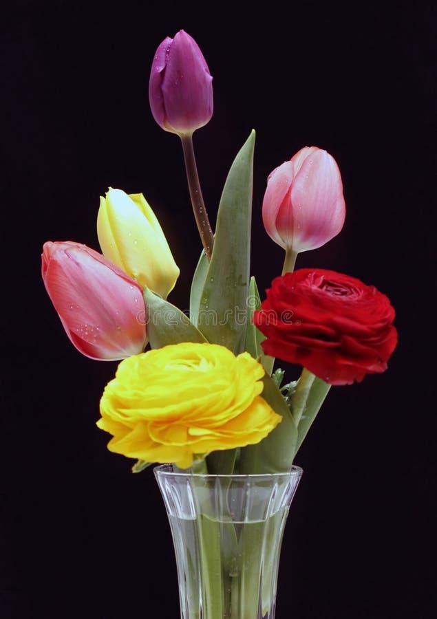 Flores vívidas foto de stock royalty free