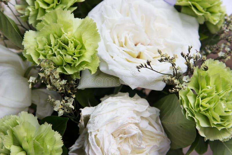Flores verdes e brancas imagem de stock
