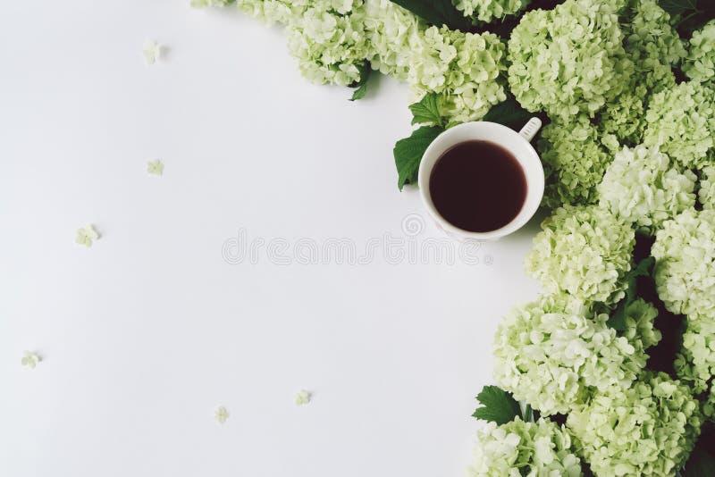 Flores verdes e copo amarelo com chá em um fundo branco imagens de stock royalty free