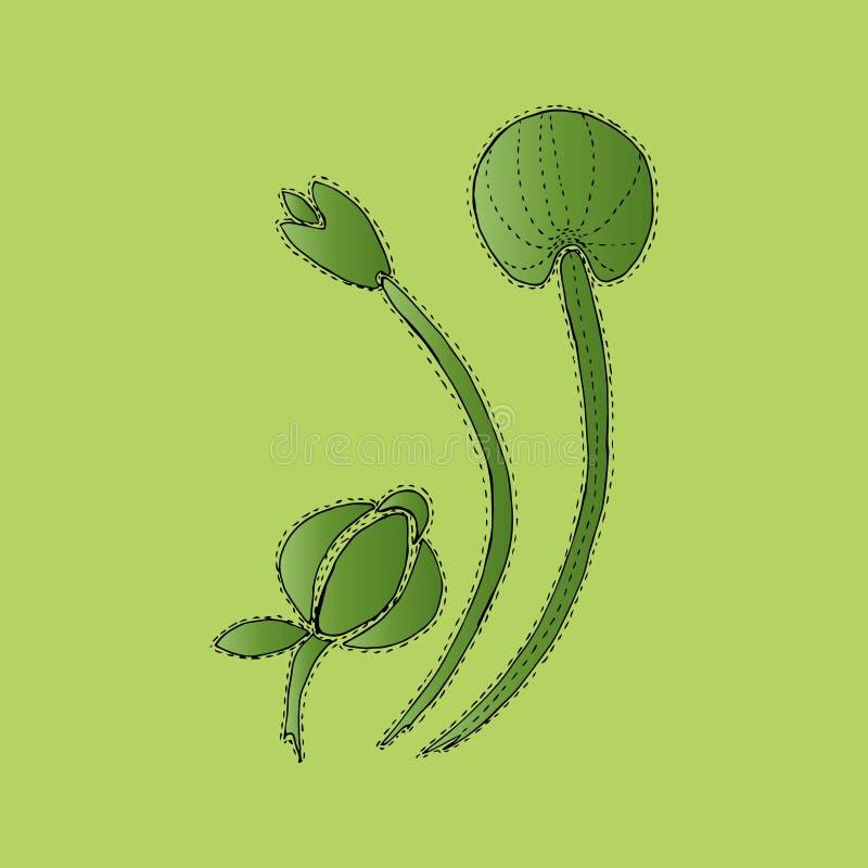 Flores verdes en la floración, dientes de león, fondo del ejemplo libre illustration