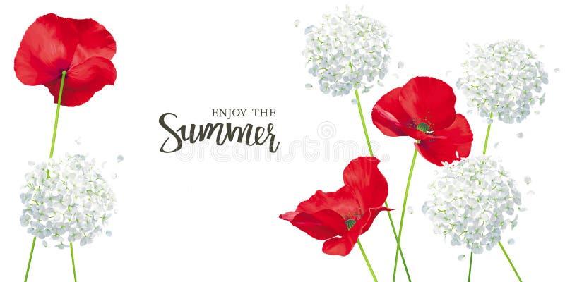 Flores vermelhas brilhantes luxuosos da papoila e da hortênsia do vetor - painti ilustração royalty free