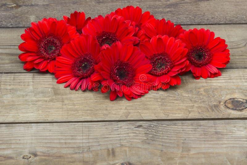 Flores vermelhas do gerbera no fundo de madeira foto de stock