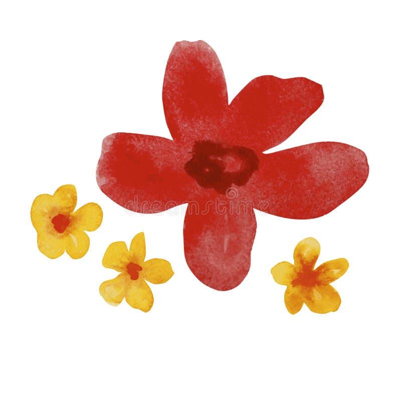 Flores vermelhas e amarelas da aquarela imagens de stock royalty free