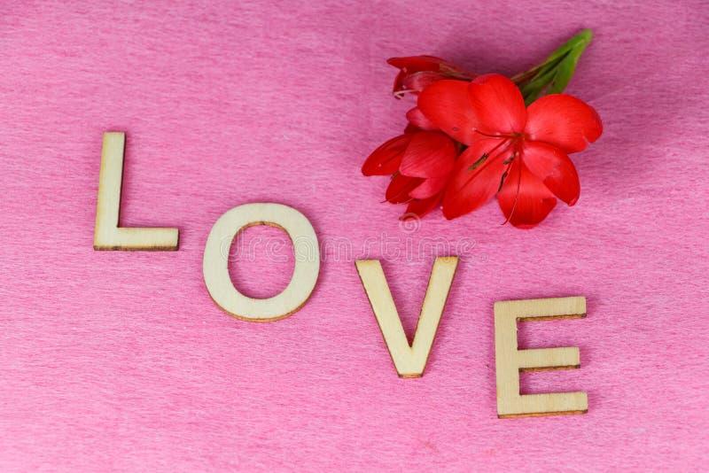 Flores vermelhas e amor fotos de stock royalty free