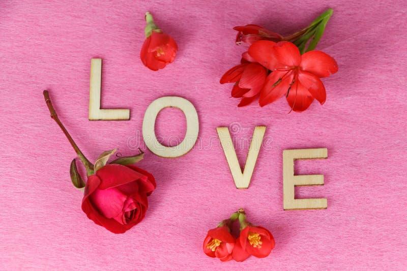 Flores vermelhas e amor fotografia de stock