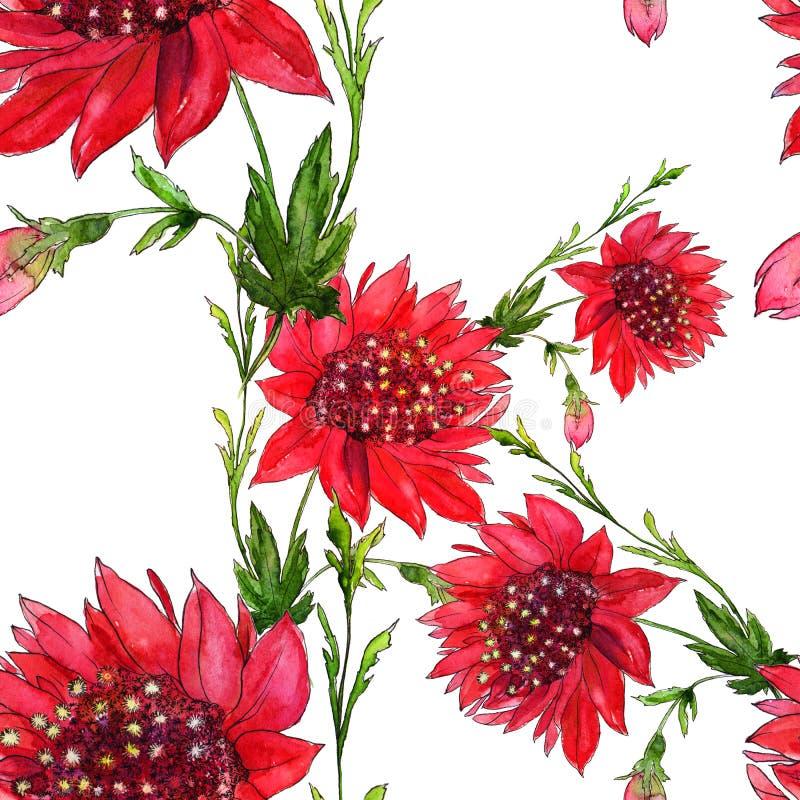 Flores vermelhas - teste padrão sem emenda Flores - composição decorativa watercolor Use materiais impressos, sinais, artigos, We ilustração do vetor