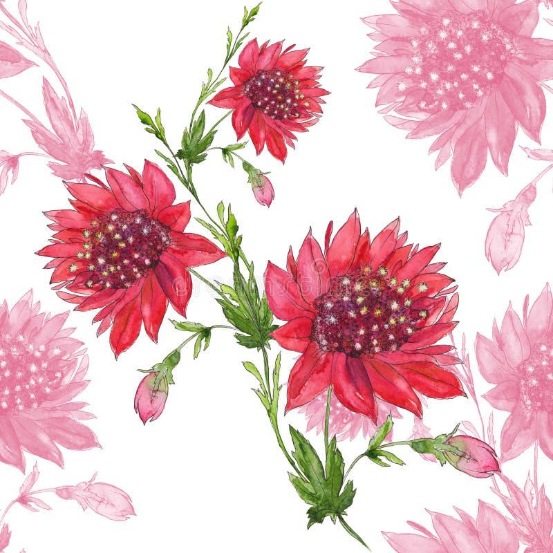 Flores vermelhas Teste padrão sem emenda Imagem de fundo abstrata da aquarela - composição decorativa U ilustração stock