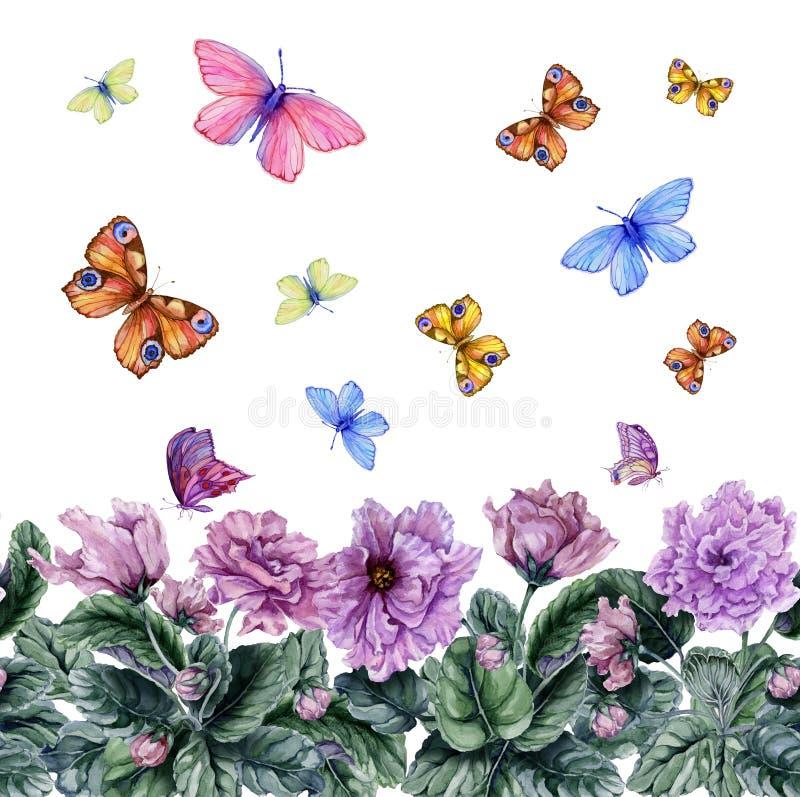 Flores violetas africanas hermosas y mariposas que vuelan en el fondo blanco Modelo floral inconsútil Pintura de la acuarela stock de ilustración