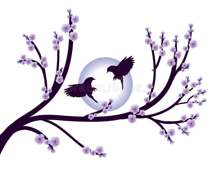 Flores violetas e pássaro da mola de sakura das flores isolados ilustração do vetor