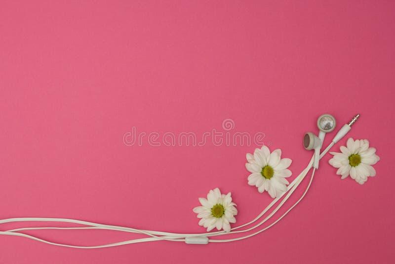 Flores y auricular en el fondo rosado imágenes de archivo libres de regalías