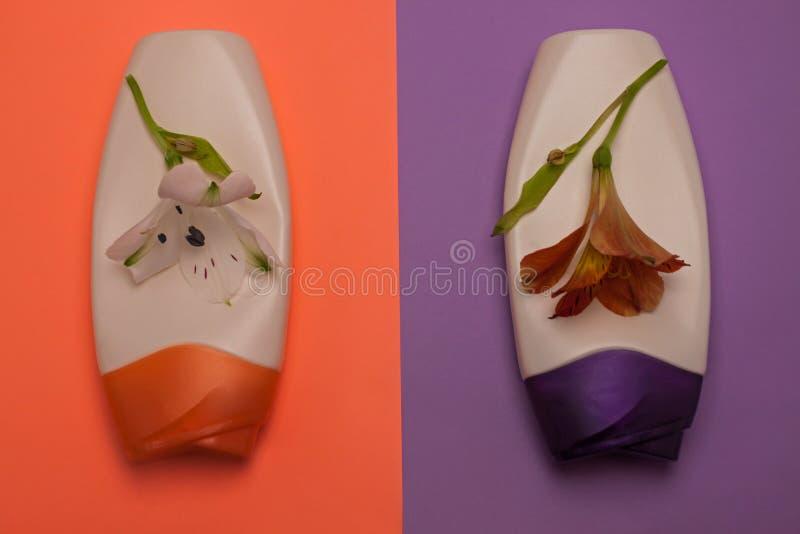 Flores y belleza, botellas decorativas de los cosm?ticos Melocot?n y fondo p?rpura de los colores, endecha plana, visi?n superior foto de archivo libre de regalías