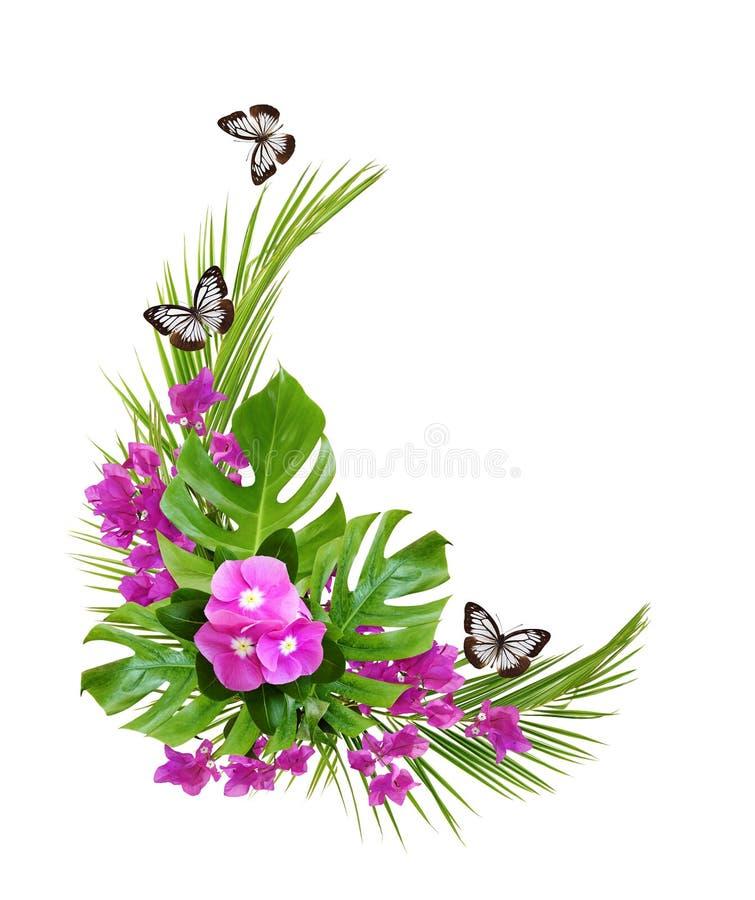 Flores y buganvilla con las hojas de palma y mariposas del Catharanthus en un arreglo tropical de la esquina imagenes de archivo