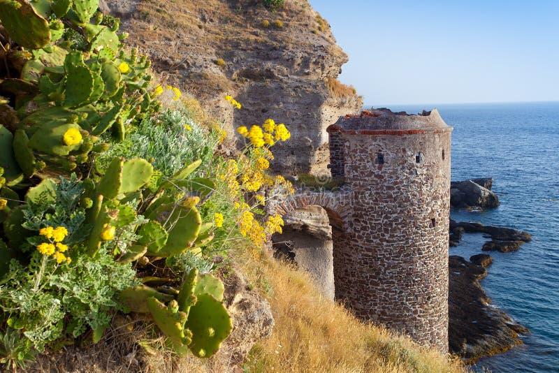 Flores y castillo en la isla del capraia imagen de archivo libre de regalías