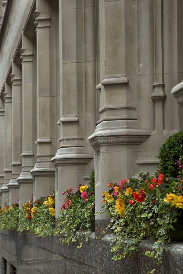 Flores y columnas imagen de archivo