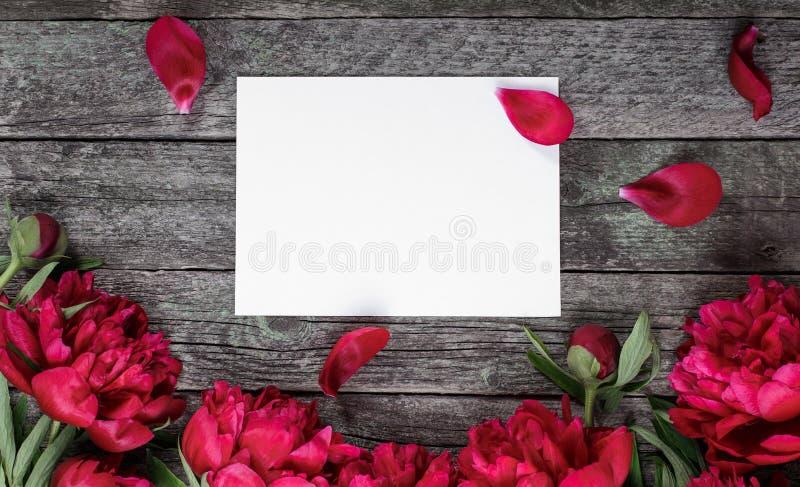 Flores y hoja de papel rosadas de las peonías sobre fondo de madera oscuro con el espacio para el texto imagen de archivo