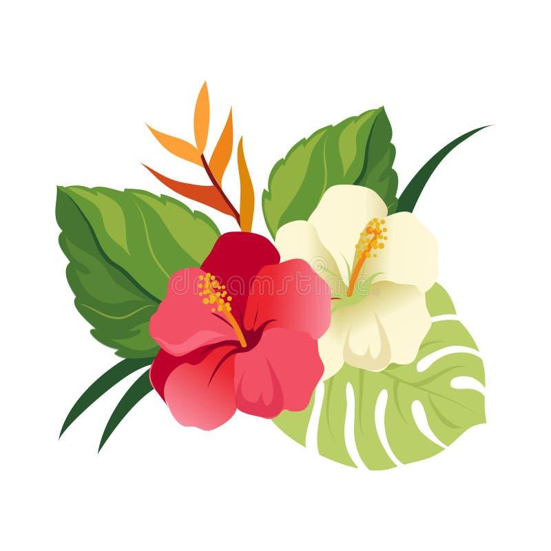 Flores y hojas de palma hermosas del hibisco Composición floral elegante del vector Ejemplo colorido de la historieta ilustración del vector