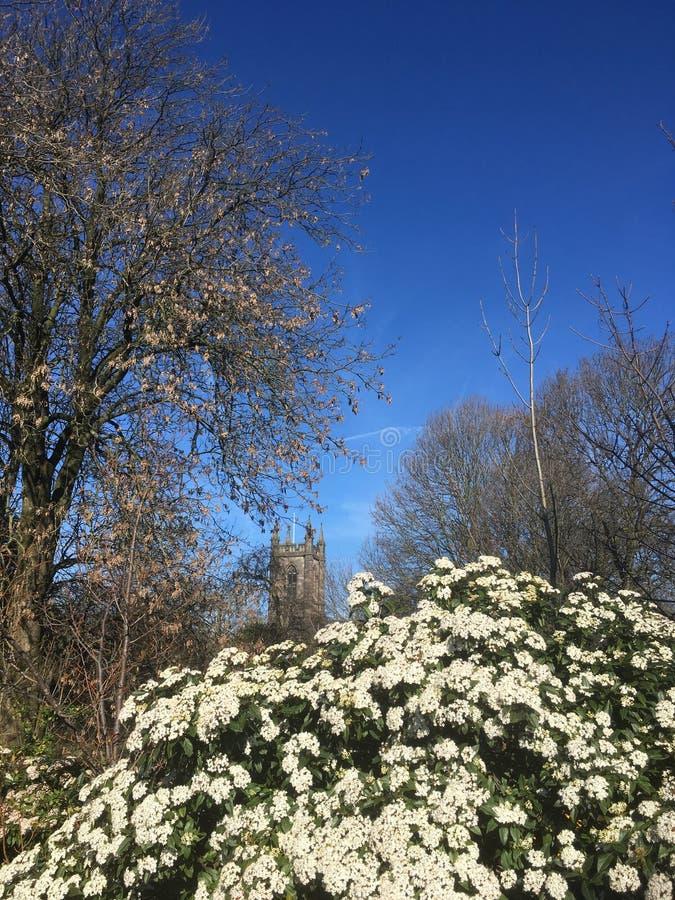 Flores y la iglesia en primavera temprana fotos de archivo