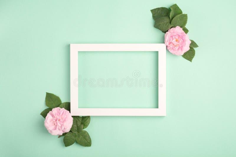 Flores y marco color de rosa hermosos de la foto en fondo en colores pastel de la menta foto de archivo