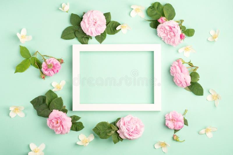 Flores y marco color de rosa hermosos de la foto en fondo en colores pastel de la menta imagen de archivo