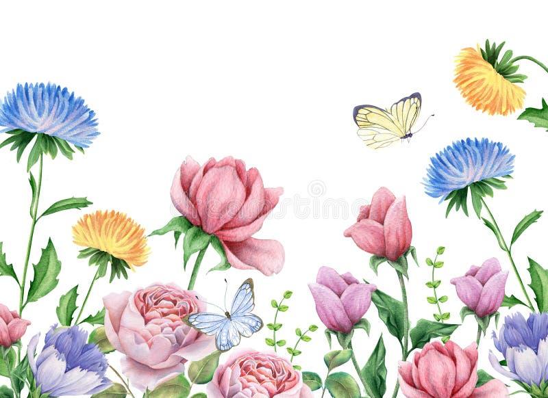 Flores y mariposas de la acuarela en blanco stock de ilustración