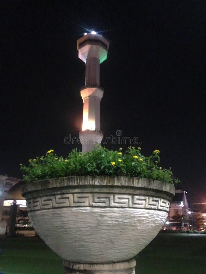 Flores y mezquitas en la noche fotografía de archivo libre de regalías