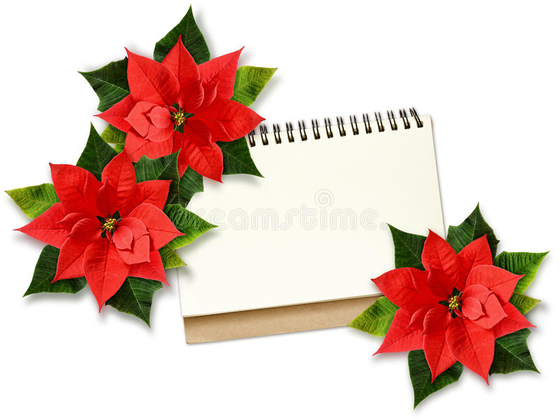 Flores y nota de la poinsetia de la Navidad fotografía de archivo libre de regalías