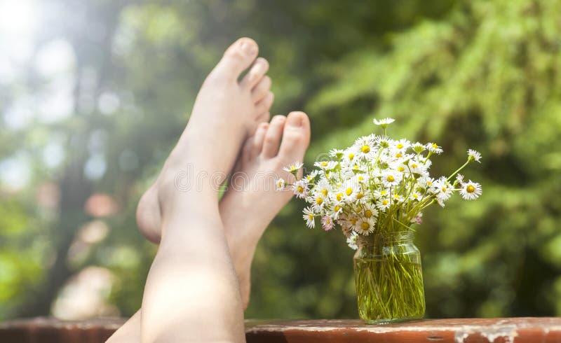 Flores y pies de la manzanilla imágenes de archivo libres de regalías