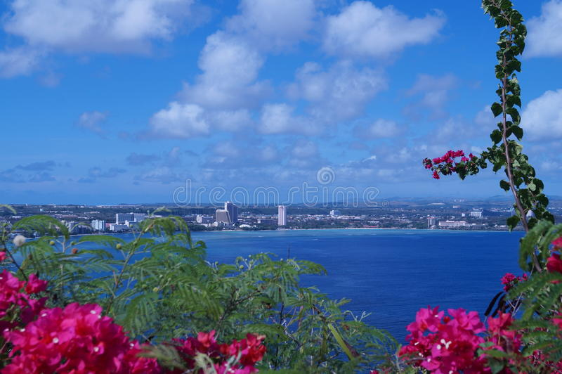 Flores y playa tropicales fotos de archivo