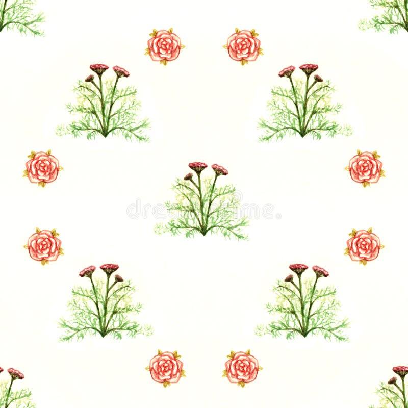 Floresce o teste padrão sem emenda da aquarela floral dos verdes da enciclopédia das rosas vermelhas isolado no fundo branco ilustração royalty free