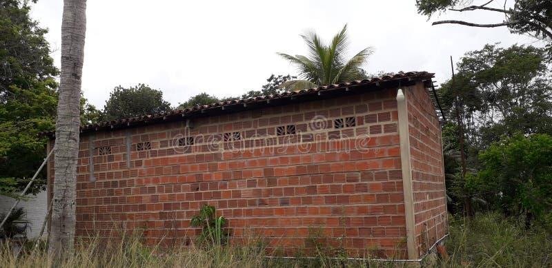 Florest na cidade de Aldeias, interior do pernambuco, Brasil imagens de stock royalty free