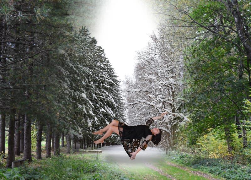 Floresta, árvore, natureza, andando, caminhada, pessoa, verde, parque, mulher, grama, trajeto, outono, paisagem, verão, madeiras, foto de stock royalty free
